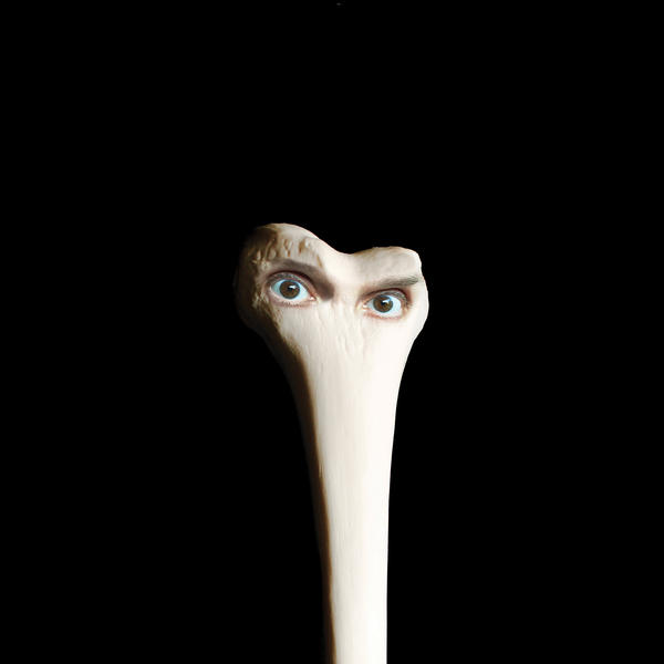 The cover for Juana Molina's upcoming album, <em>Halo.</em>