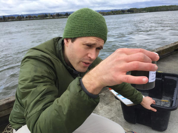 <p>Washington State University PhD student Eric Dexter collects plankton samples from a dock on the Columbia River in Vancouver, Washington.</p>