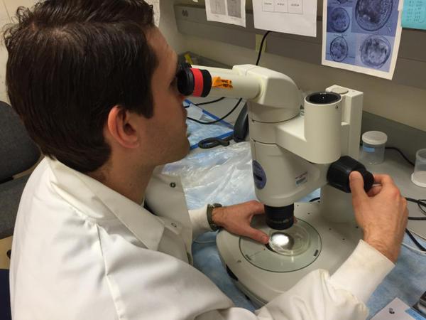 <p>Eric Dexter uses a microscope to identify invasive plankton.</p>