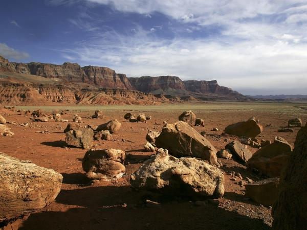 The Vermillion Cliffs National Monument hosts not only the vivid hues of the sunset, but a winged visitor too: the California condor, which conservationists hope will find a more hospitable home here.