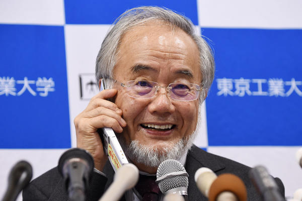 Yoshinori Ohsumi, a professor at the Tokyo Institute of Technology, smiles as he speaks with Japanese Prime Minister Shinzo Abe on a phone during a press conference in Tokyo today, after he was awarded the Nobel Medicine Prize.
