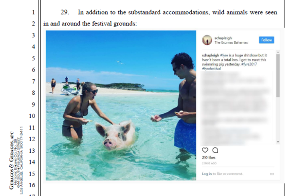 "A lawsuit filed on behalf of attendee Daniel Jung against the organizers of the Fyre Festival notes that ""wild animals were seen in and around the festival grounds."""