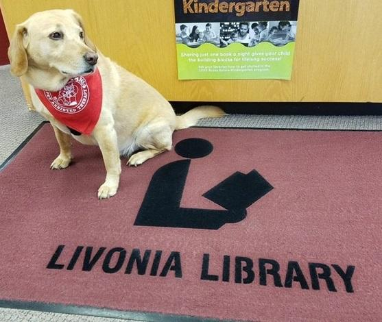 Max is a beagle-lab mix. He listens to kids read one Saturday per month at the Livonia Public Library.