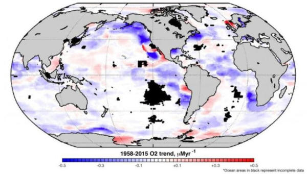 <p>The Northeast Pacific Ocean is a hotspot for oxygen loss, shown here at a depth of 100 meters.<br /><br /></p>