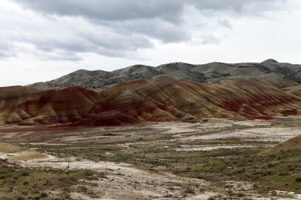 <p>Thousands are expected to come to Wheeler County due to its wide vistas, sunny skies and natural wonders like the nearby Painted Hills. Consequently, the U.S. Forest Service and other government agencies are struggling with many of the issues confronting small towns like Spray.</p>