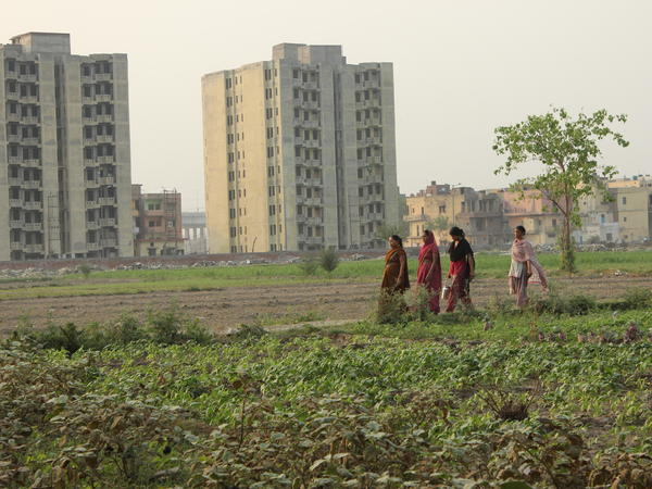 Empty apartment buildings loom tall in the New Delhi suburbs. High rises like these are where most of India's black money is stored.