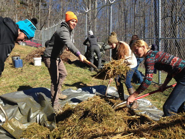 <p>Katrina Spade (orange cap) of the Urban Death Project works with student volunteers to prepare the mulch pile at the Western Carolina University Forensic Osteology Research Center.</p>