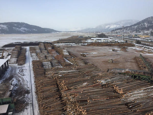 File photo. This stockpile of timber kept the Vaagen Brothers mill running through 2016's wet fall.