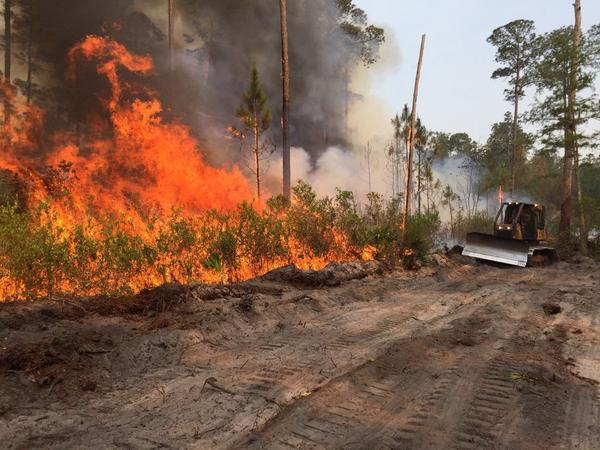 Bulldozers tackle a wildfire in Sumter County on May 10, 2017.