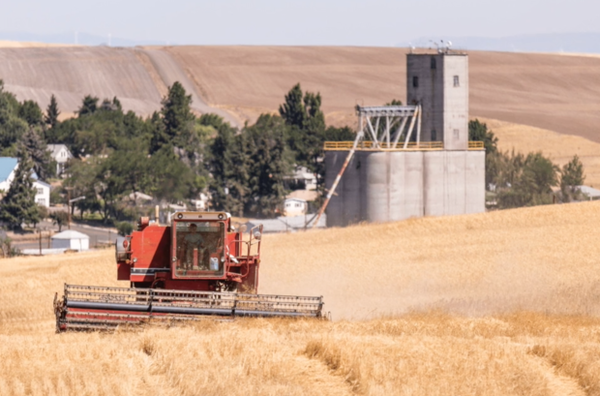 <p>A farming scene from a video used by Azure Standard, an organic farm, in its campaign against efforts by Sherman County, Oregon, to require operators to improve their weed-control measures.</p>