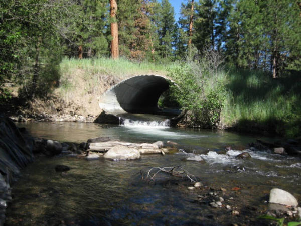 Before: An undersized stream crossing & fish passage barrier, prior to reconstruction, Malheur National Forest.