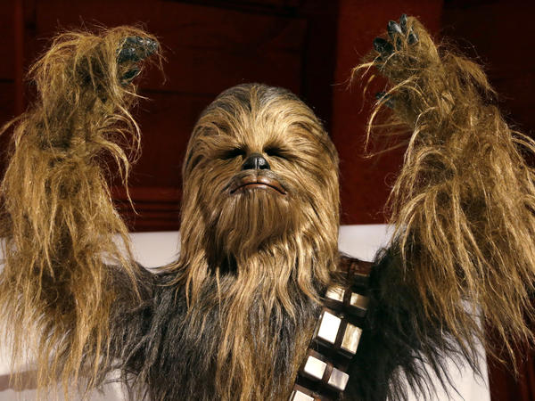 A man dressed in a Chewbacca costume throws his arms aloft in what can only be a confounding mix of emotions: triumph, sure — but also righteous indignation at all the decades lost to reckless misspelling.
