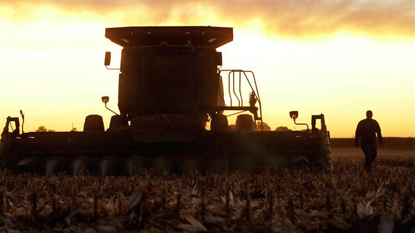 An Illinois farmer checks the blades on his combine while harvesting corn last October. The value of the 2011 U.S. corn crop was more than $76 billion.