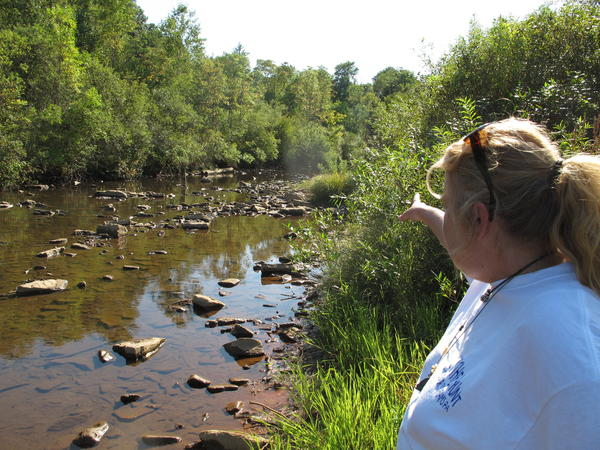 Laurie Barr points to an abandoned well located in the middle of a McKean County, Pa., stream.
