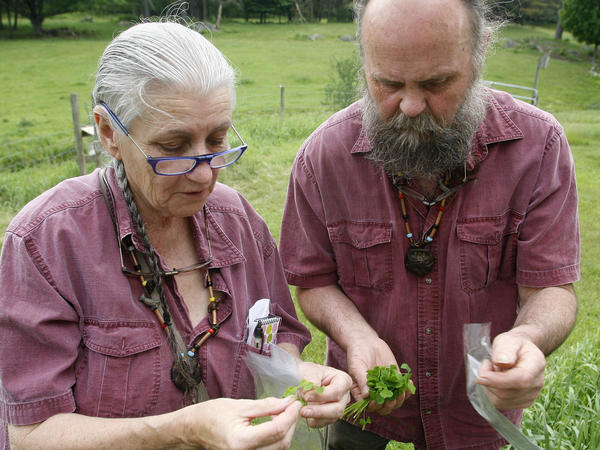 Kim and Hook have become skilled gatherers of edible wild foods over the years.