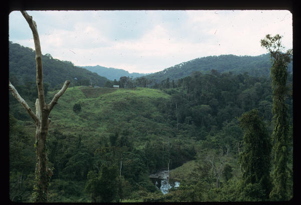 Anthropologists Renato and Shelly Rosaldo lived in the Philippines with the Ilongot, an isolated tribe in the rain forest. They were based here, in a settlement of Kakidugen, from 1967 to 1969 and in 1974.