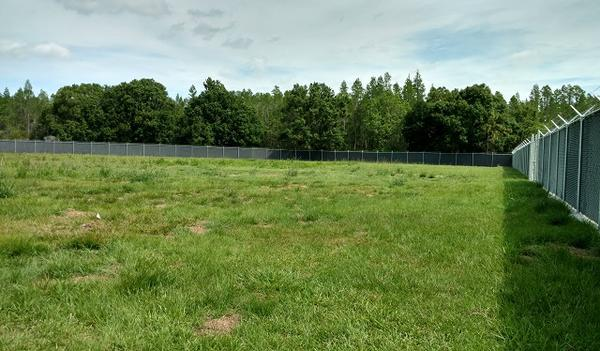 This field at a Pasco Forensic Training Facility will allow forensic researchers to study decomposition of bodies in Florida's environment. However, it won't receive $4.3 million from the state this year thanks to Gov. Scott's veto.