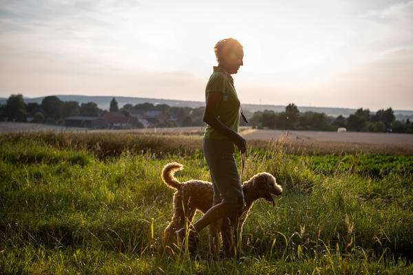Older adults who own dogs walk more than those who don't own dogs, and that they're moving at a good clip, a study finds.