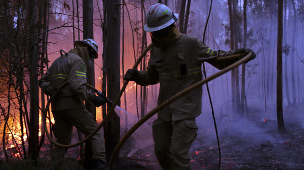 Portuguese firefighters work to stop a forest fire from reaching the village of Avelar in central Portugal at sunrise Sunday.