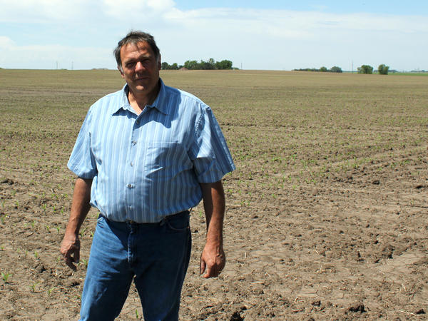 Farmer Tim Mueller raises corn and soybeans in Nebraska. He is hoping to get into the chicken business by signing a contract to raise birds for a subsidiary of Costco.