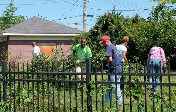 Volunteers clear brush from a community garden in the Jeff-Vander-Lou neighborhood.