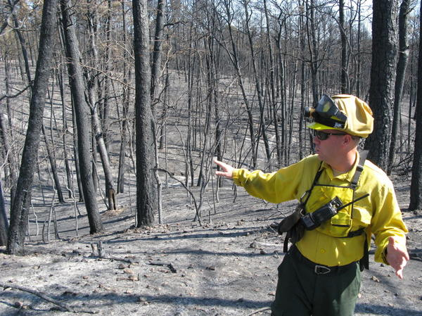 """Superintendent Todd McClanahan surveys what remains of Bastrop State Park. """"It hurts,"""" he says."""