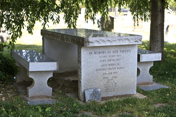 Washington funeral grounds like Congressional Cemetery often served as parks for the city's residents. Gravestones shaped like picnic tables encouraged people to come and spend the day, and even have a picnic.