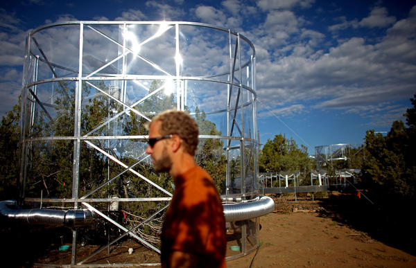 Powers walks past a tree chamber. Researchers say drought-stressed trees appear to start consuming their own carbon stores.  <br /><br />