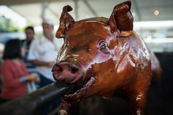 Torture or tasty tradition? Many consider the consumption of meat to be a question of ethics. Here, a pig is roasted during the annual Festa Junina in Guarulhos, a suburb of Sao Paulo, Brazil.