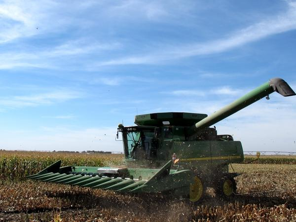 During corn harvest, it's all hands on deck on the Friesen family farm in Henderson, Neb. Nancy Friesen typically takes the controls of their John Deere combine.