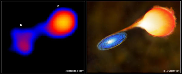 This Chandra X-ray telescope image shows Mira A (right), a highly evolved red giant star, and Mira B (left), a white dwarf. To the right of the image is an artist's conception of the Mira star system. Mira A is losing gas rapidly from its upper atmosphere via a stellar wind. Mira B exerts a gravitational tug that creates a gaseous bridge between the two stars.