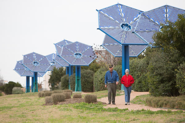 Solar Sunflowers, an art installation, greets visitors to Mueller's commercial and retail hub off of Interstate 35. The panels power a nightly light display and return power to the grid. When the development is complete, five miles of granite trails will connect the residents to its commercial and retail hubs.