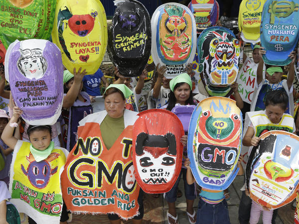 "The ""Green Moms"" group displays painted baby tubs during a June 2013 protest in Quezon, Philippines, showing opposition to the genetically modified rice variety ""golden rice,"" which proponents promote as a solution to Vitamin A deficiency."