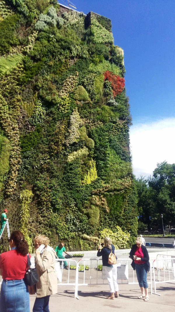 Tourists snap photos of a vertical garden outside the CaixaForum, an arts foundation in Madrid.