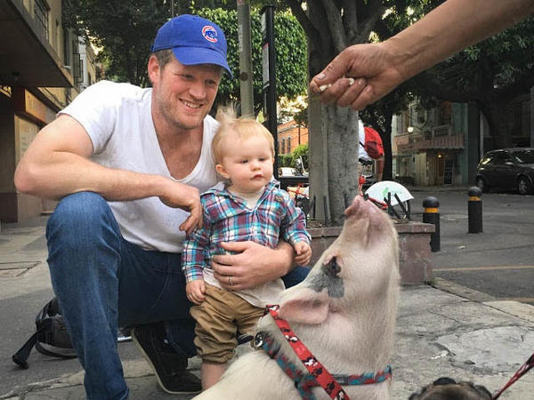 Father and son meet up with the pet pig often seen in their neighborhood in Mexico City.