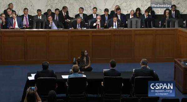 Sandvoss & others testified before a senate committee on June 21, 2017.