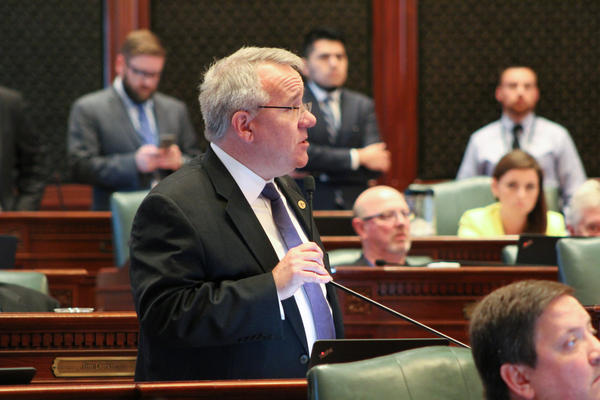 Rep. Steve Andersson (R-Geneva) explains why he voted to override Gov. Bruce Rauner's veto of his budget bill.