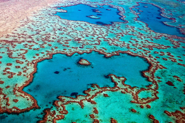 Aerial view of the Heart Reef, part of the Great Barrier Reef