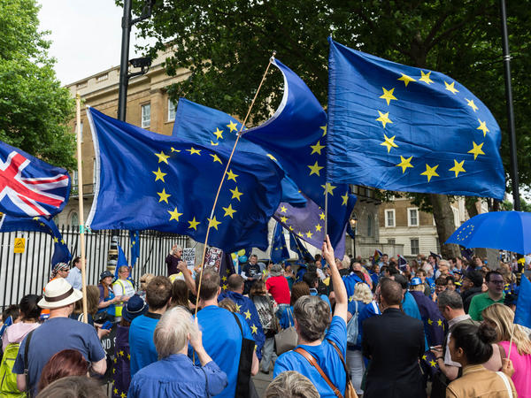Hundreds of pro-EU supporters gather on Whitehall on the first anniversary of the Brexit referendum to protest against the process of Britain leaving the European Union.