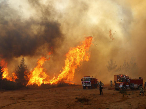 Firefighters work to put out a forest fire in Valparaiso, Chile, in March.