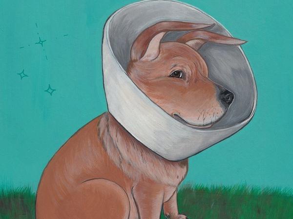 <em>Fetch: How a Bad Dog Brought Me Home </em>By Nicole J. Georges