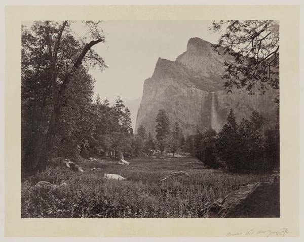 <p>Yosemite</p>