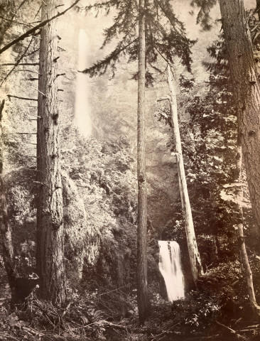 <p>Multnomah Falls</p>