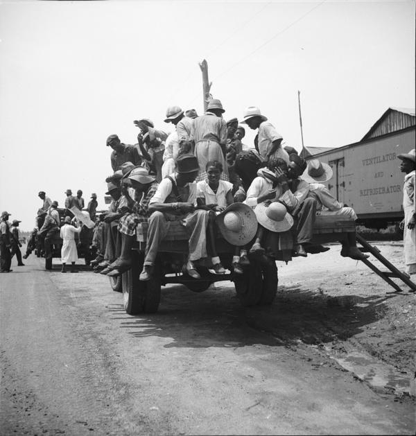 An undated photo shows peach pickers being driven to the orchards in Muscella, Ga. Black labor was essential for the success of the peach crop, even if African-Americans were rarely credited for the importance of their work.