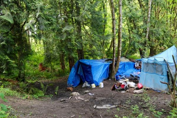 <p>Homeless service providers say counting homeless in rural areas can be more difficult because they are often less visible than in urban areas. After Love Overwhelming closed, many left town to make camp in the woods.</p>