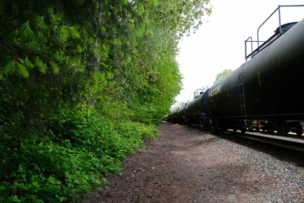 <p>Homeless service providers say rural areas can be more difficult to track homelessness. In Cowlitz County, outreach workers have seen an uptick of camps in the woods outside of town.</p>
