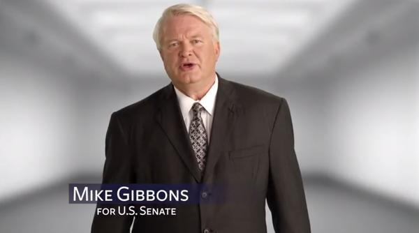 Mike Gibbons, Republican U.S. Senate candidate