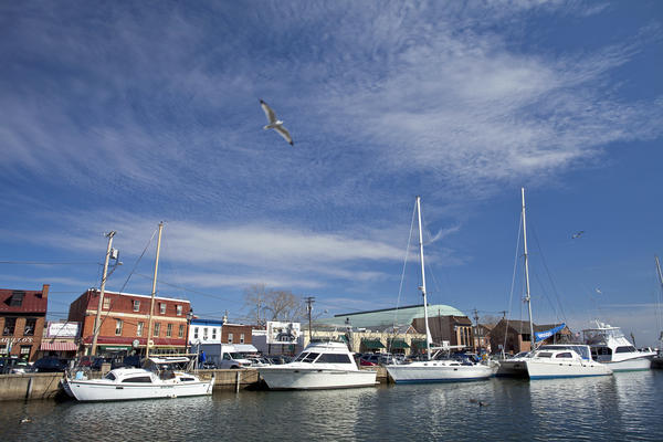 The streets of Annapolis, Md., now flood about 40 times a year at high tide. Even the owners of property that is significantly inland may need flood insurance as the sea's level continues to rise.