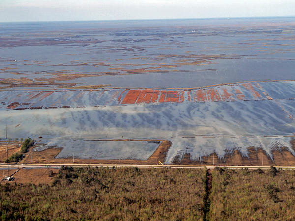 The vast oil insfrastructure in Louisiana's wetlands are vulnerable to damage during hurricanes. These facilities were leaking after Hurricane Isaac.