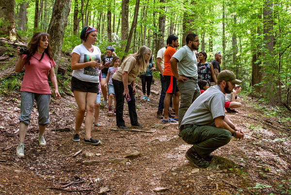 """Ryan Williamson (crouching, right) studies the behavior of a black bear sow and her two young cubs, while also monitoring a crowd of tourists. """"This is a safe distance,"""" he says. Any closer and he'd scare the bears off."""